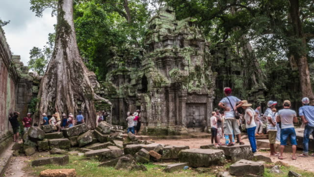 ta phrom temple, angkor wat - angkor stock videos and b-roll footage