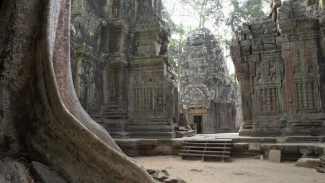 td / ta prohm temple - angkor wat stock videos and b-roll footage