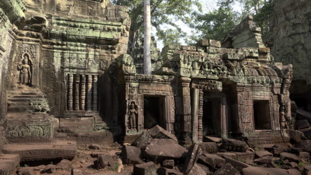 pan / ta prohm temple with apsara relief - angkor wat stock videos and b-roll footage