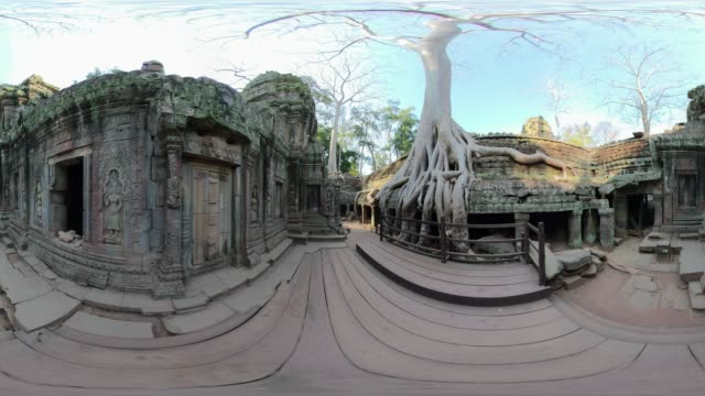 360 vr / ta prohm temple with strangler fig tree without people - monoscopic image stock videos & royalty-free footage
