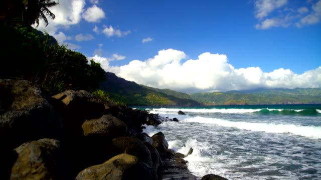 taaoa hiva oa ocean bay lush vegetation marquesas - remote location bildbanksvideor och videomaterial från bakom kulisserna