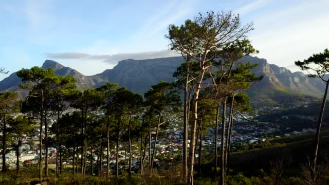 Table Mountain, one of the new seven wonders of the world, is revealed by rising through a tree line in an aerial video of this incredible natural landmark.