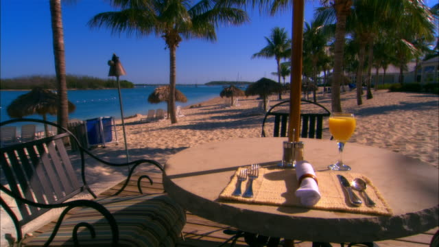 cu, table setting on beach, key west, florida, usa - fan palm tree stock videos & royalty-free footage