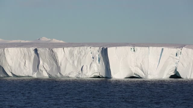 a tabular iceberg off livinstone island on the antarctic peninsular. the peninsular is one of the fastest warming places on the planet. - ice sheet stock videos and b-roll footage