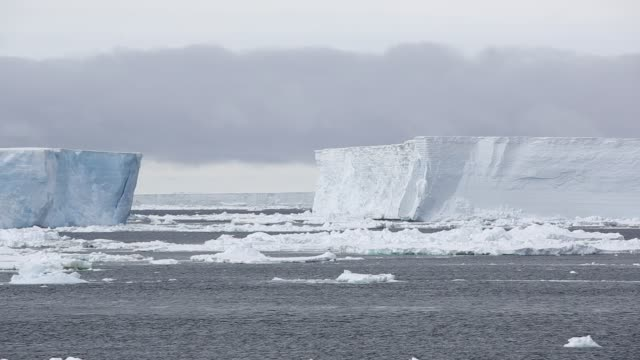 tabular icebergs that have broken off the larson c ice shelf floating in the weddell sea near the danger islands, antarctica. - antarctica stock videos & royalty-free footage