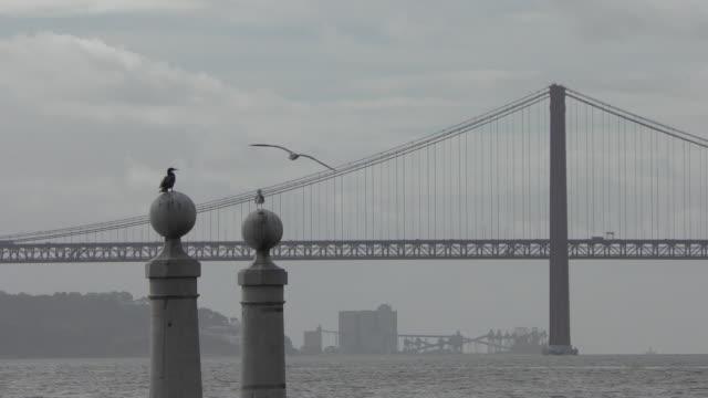 テージョ川セカテドラル - 4月25日橋点の映像素材/bロール