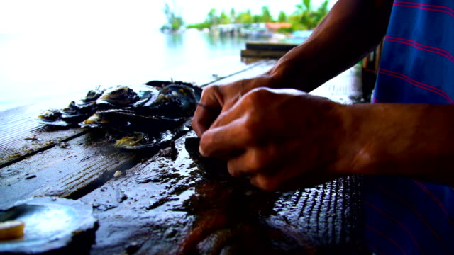 tahaa workers extracting preparing pearls tahiti south pacific - tahaa island stock videos & royalty-free footage
