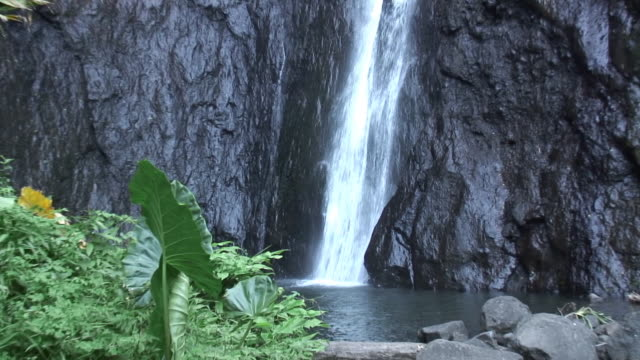 tahitien waterfall - hd - tahiti stock videos & royalty-free footage