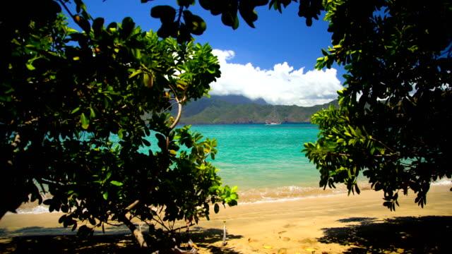 tahuata deserted ocean beach lush vegetation marquesas pacific - remote location bildbanksvideor och videomaterial från bakom kulisserna