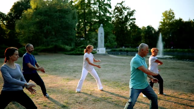 tai chi - martial arts stock videos and b-roll footage