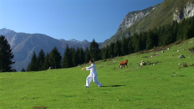 vidéos et rushes de hd : tai-chi de la nature - grâce