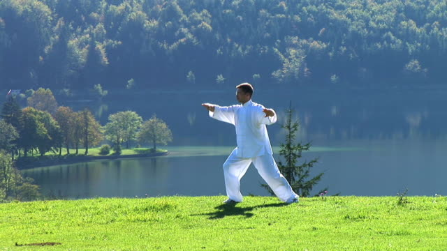hd: tai-chi in der natur - concentration stock-videos und b-roll-filmmaterial