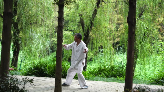vídeos de stock, filmes e b-roll de tai chi is a kind of chinese martial art also a traditional fitness practice for elderly people - vida simples