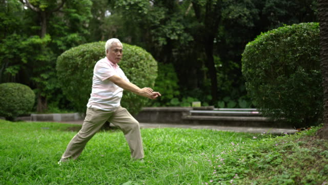 tai chi practice class at park - martial arts stock videos and b-roll footage