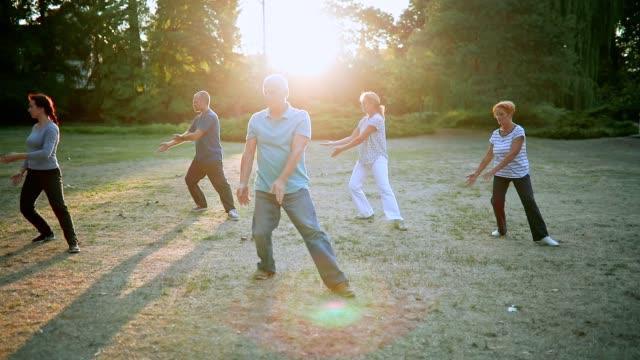 vídeos de stock e filmes b-roll de tai chi - idosos ativos