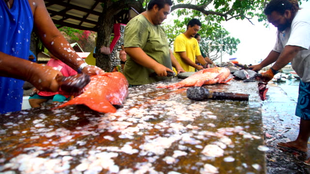 taiohae men cleaning fish catch nuku hiva marquesas - scaly stock videos & royalty-free footage
