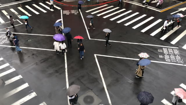 taipei pedestrian crossing in rain time lapse - elevated view - taipei stock videos & royalty-free footage