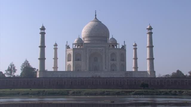 taj mahal agra india - medium group of animals stock videos & royalty-free footage