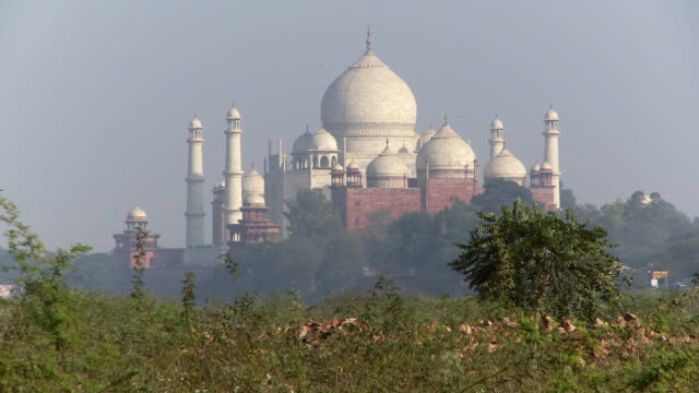 Taj Mahal from a distance over trees