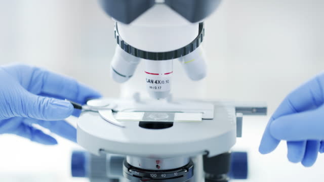 take a closer look and you'll find the answer - pathologist stock videos & royalty-free footage