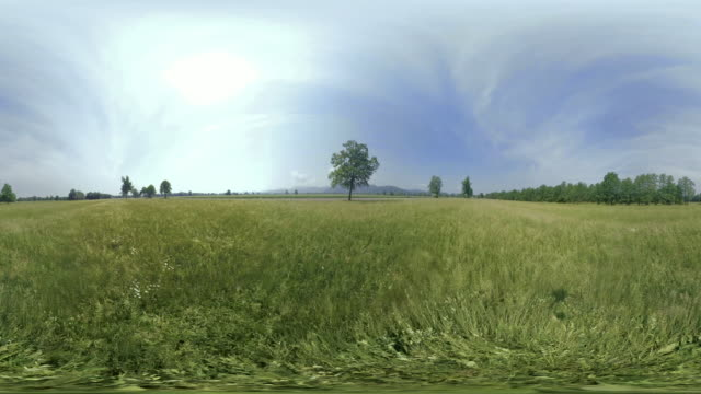 AERIAL VR 360: Take off from a field in sunshine