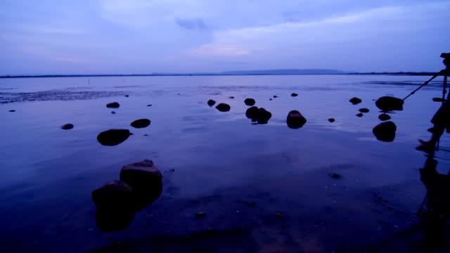 take photo at the lake - walking in water stock videos & royalty-free footage