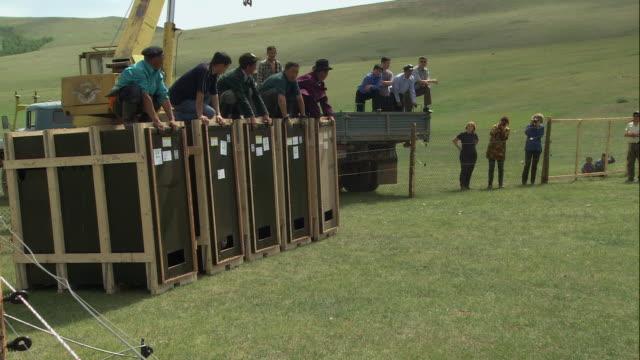 ts takhi horses being released into the wild / mongolia - przewalskihäst bildbanksvideor och videomaterial från bakom kulisserna