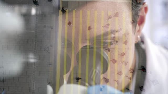 vídeos de stock, filmes e b-roll de dando uma olhada mais de perto - manipulação digital