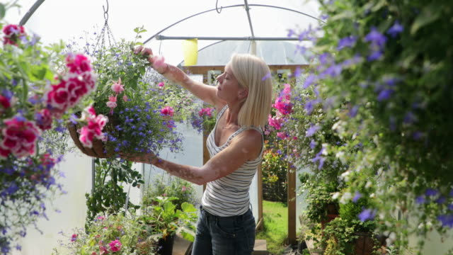 taking care of her flowers - one mid adult woman only stock videos & royalty-free footage
