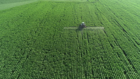taking care of the crop. aerial view of a tractor fertilizing a cultivated agricultural field. - tractor stock videos & royalty-free footage
