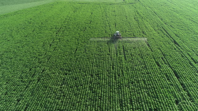vídeos de stock e filmes b-roll de taking care of the crop. aerial view of a tractor fertilizing a cultivated agricultural field. - campo