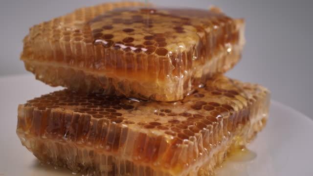 stockvideo's en b-roll-footage met het nemen van honing door metalen lepel in houten kom - animal creation