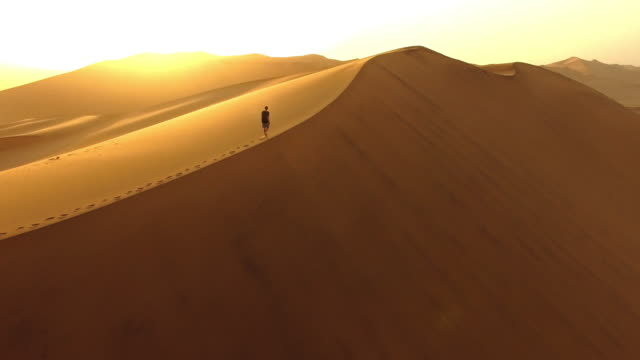 taking in the dawn from the dunes - desert stock videos & royalty-free footage