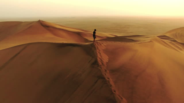 taking in the sandscape - namibian desert stock videos and b-roll footage