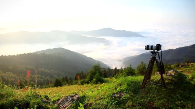 hd: taking nature photos - slr camera stock videos and b-roll footage