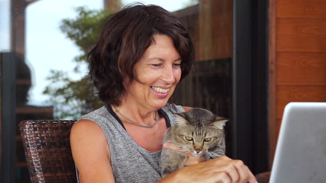 taking time to video call family with lapcat - mental wellbeing stock videos & royalty-free footage