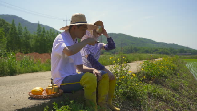 taking up farming - married couple sitting on the roadside and pouring a bowl of makgeolli (korean traditional alcohol) - south korea couple stock videos & royalty-free footage