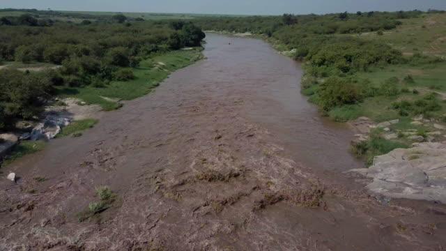 vídeos de stock, filmes e b-roll de talek river in flood, maasai mara, kenya, africa - corredeira rio