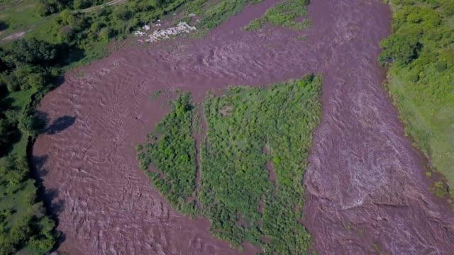 stockvideo's en b-roll-footage met talek river in flood, masai mara, kenya, africa - moesson