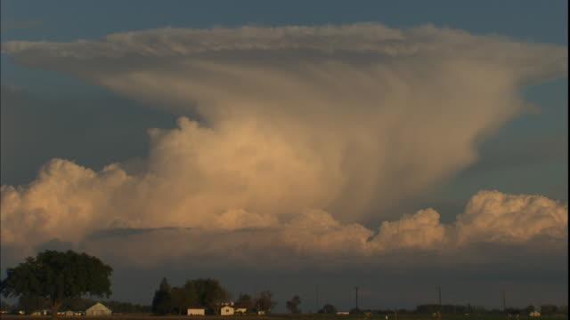 vídeos de stock, filmes e b-roll de a tall cloud formation glows in golden sunlight over a farm. - cúmulo nimbo