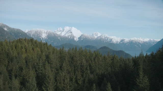 vídeos de stock, filmes e b-roll de aerial tall evergreens revealing snow-capped mountains and tree-covered hillsides surrounding blue waters / vancouver, british columbia, canada - canadá