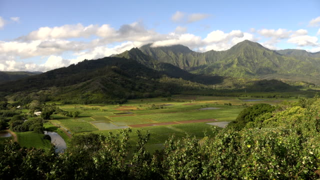 tall mountains and clouds on kauai island - butte rocky outcrop stock videos & royalty-free footage