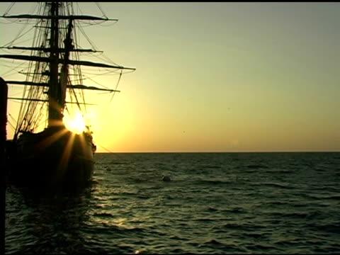 vidéos et rushes de grand voilier au lever du soleil - groupe moyen d'animaux