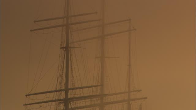 ms, td, tall ship moored in port of hamburg at sunrise, hamburg, germany - tonad bild bildbanksvideor och videomaterial från bakom kulisserna