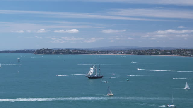 t/l ws ha tall ships and yachts racing in waitemata harbour during the auckland anniversary day regatta/ auckland, new zealand - horizont stock-videos und b-roll-filmmaterial