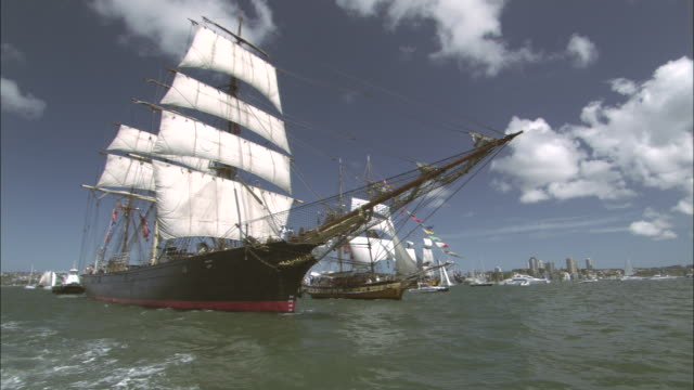 tall ships move across sydney harbor under full sail. - schiffsmast stock-videos und b-roll-filmmaterial