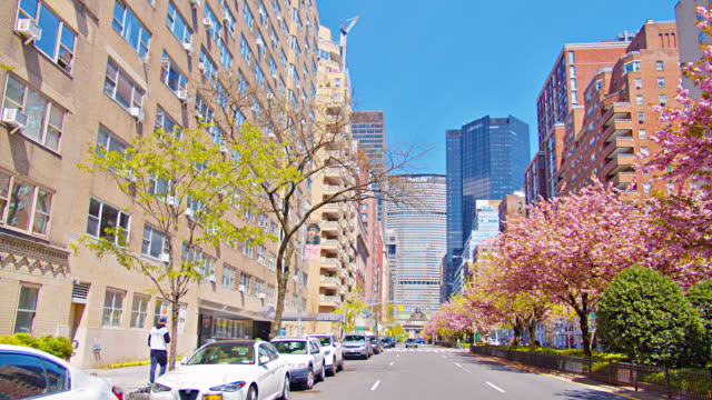 tall skyscraper on quiet peaceful city street in new york - male likeness stock videos & royalty-free footage