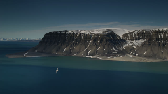 tl tall snowy cliffs and sea, svalbard, arctic - coastline stock videos & royalty-free footage