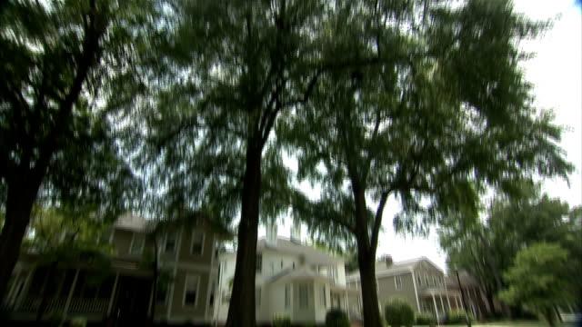 tall trees shade an upper-class neighborhood street. - shade stock videos & royalty-free footage