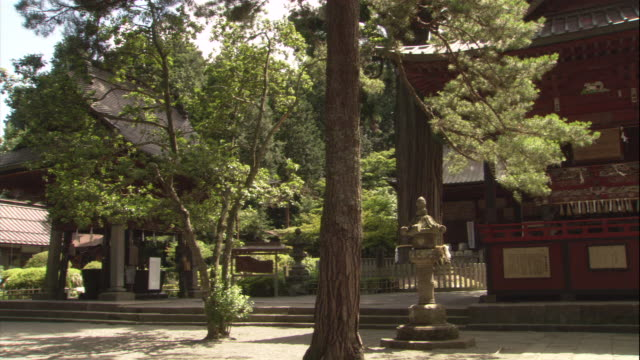 tall trees surround the traditional japanese buildings of a shinto shrine. - 仏塔点の映像素材/bロール